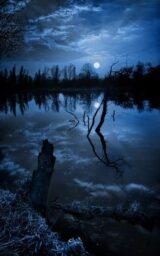 e5b2f2ef42cde3bff943d430c6b36b9c--dark-night-blue-moon